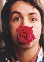 Paul McCartney Rose